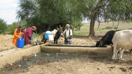 3. A water source in a rural locality in the Ichkeul watershed tunisia