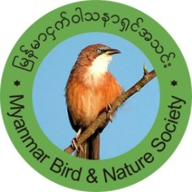 Myanmar Bird and Nature Society Logo300