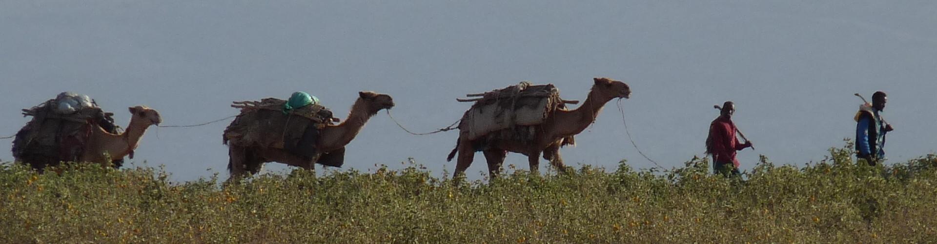 Ethiopia Somali Region