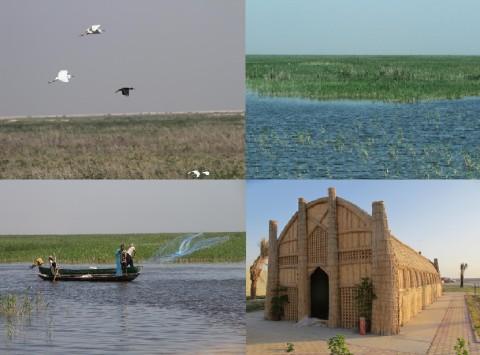 Marshlands of Southern Iraq