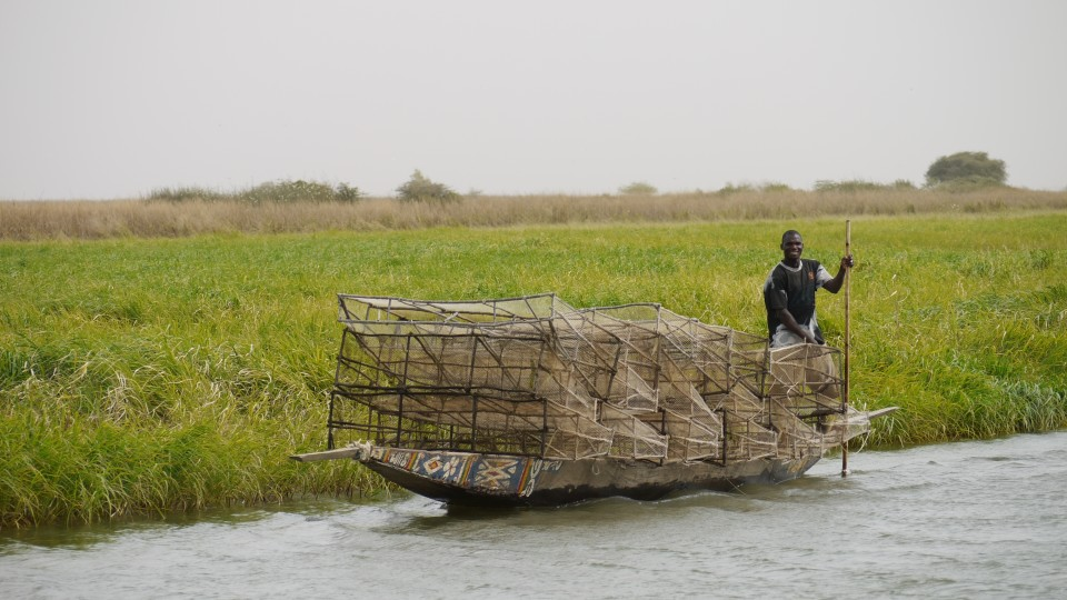 Inner Niger Delta fisherman with nets