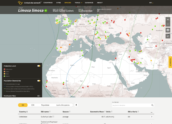 Screenshot of the Critical Sites Network Tool showing godwits