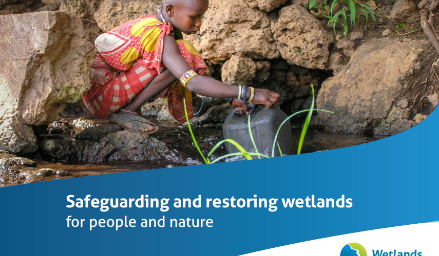 Cover of a brochure about Wetlands International showing a child gathering water among rocks