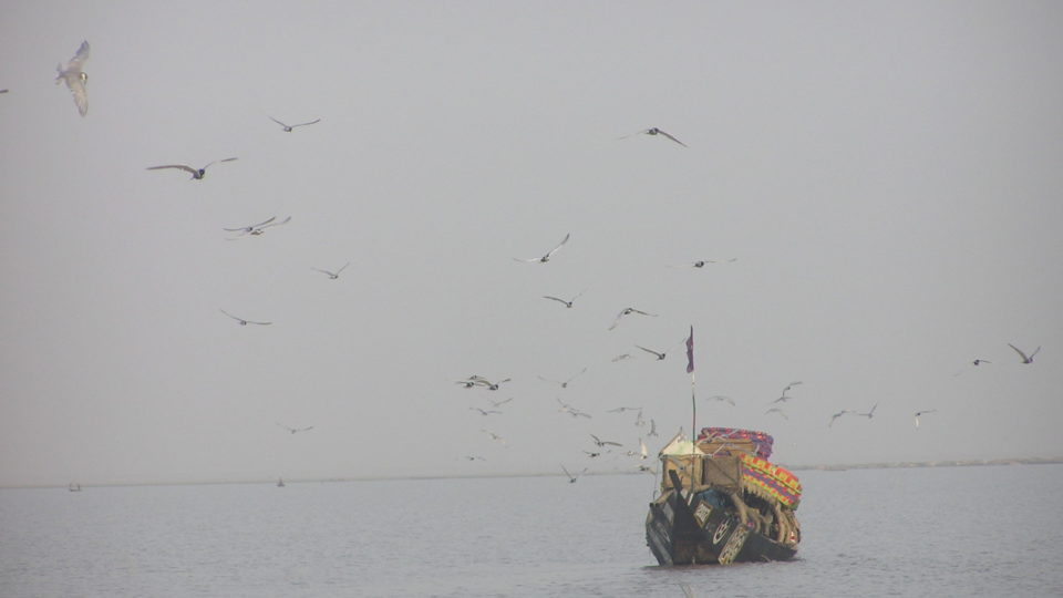 Birds and a boat in Mali