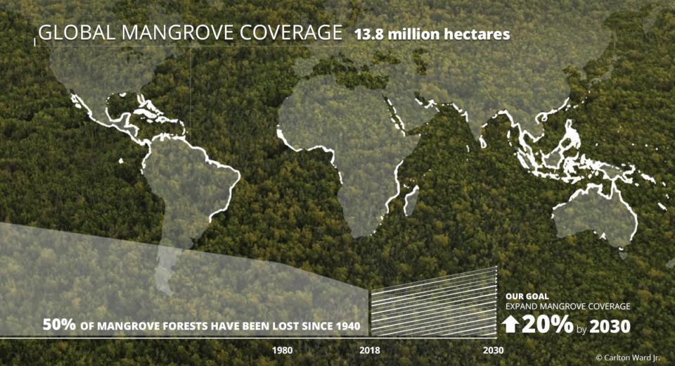 GMA-Mangrove-Map